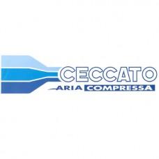 Головка Ceccato для компресора FC2/24CM2, FC2/50CM2 (6218739800)